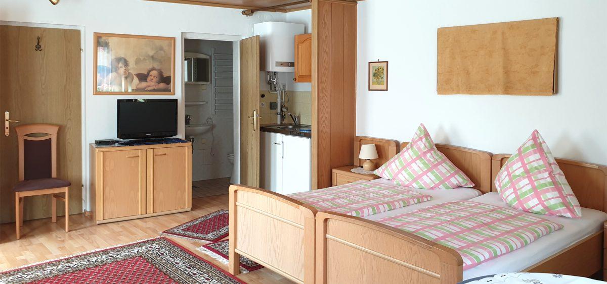 Zimmer mit Kochnische und Bad